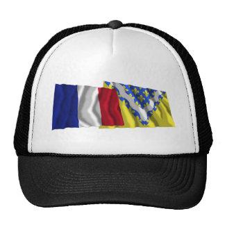 Banderas que agitan de Francia y de Val-de-Marne Gorras