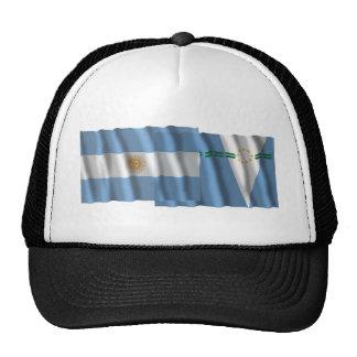 Banderas que agitan de la Argentina y de Formosa Gorro