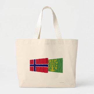 Banderas que agitan de Noruega y del Chaleco-Agder Bolsas