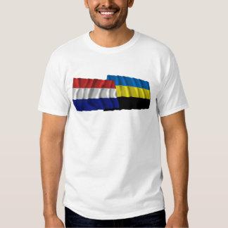 Banderas que agitan de Países Bajos y de Güeldres Playeras
