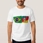 Banderas que agitan de Río Grande del Sur y del Camisas
