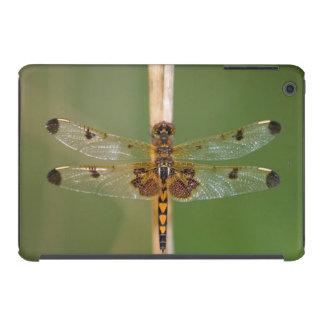 Banderín del calicó fundas de iPad mini