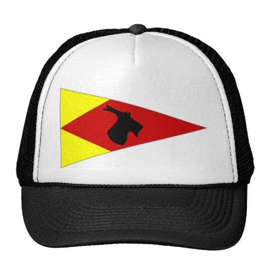 Banderín que navega irlandés gorras de camionero