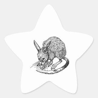 Bandicoot Pegatina En Forma De Estrella