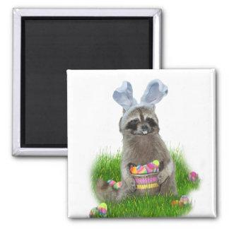 Bandido del mapache de Pascua Imán Cuadrado