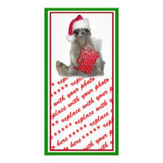 Bandido del mapache de Santa del navidad Tarjetas Fotográficas