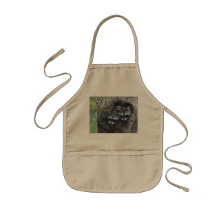 Bandit Buddies by Terry Isaac Apron