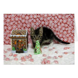 Bandit Cat Kitten Christmas Rescue Card