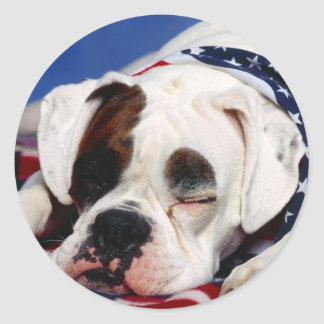 Bandit the Boxer Classic Round Sticker