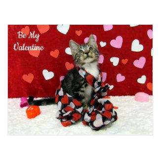 Bandit's Best Dressed Valentine's Post Card