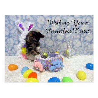 Bandit's Easter U.S. Postcard (3419)