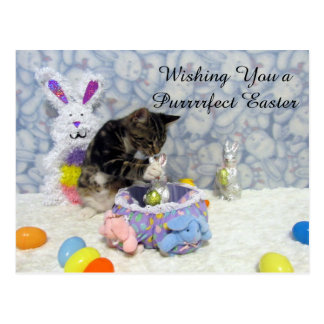 Bandit's Easter U.S. Postcard (3420)