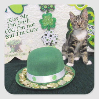 Bandit's St. Patrick's Day Stickers (3387)