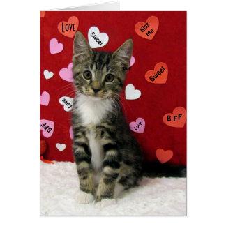 Bandit's Valentine's Card (3335)