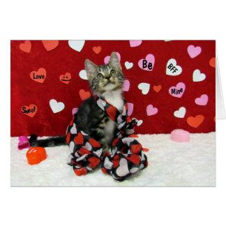 Bandit's Valentine's Card (3346)