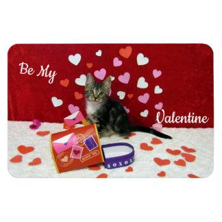 Bandit's Valentine's Magnet (Tabby Kitten)