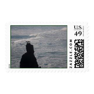Bandon Beach Offshore Rocks Brandts Cormorant Postage