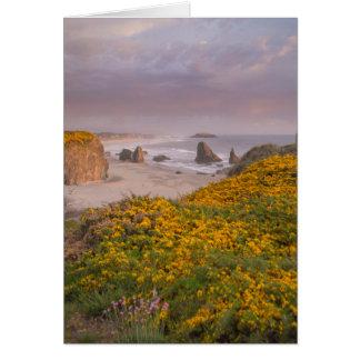 Bandon Beach Offshore Rocks Yellow Flowering Gorse Card