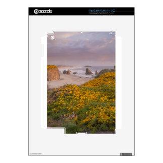 Bandon Beach Offshore Rocks Yellow Flowering Gorse Skin For iPad 2