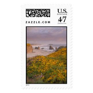 Bandon Beach Offshore Rocks Yellow Flowering Gorse Stamp