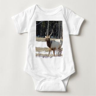 Banff Elk Tshirt