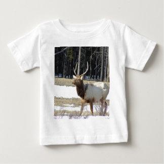 Banff Elk T-shirts