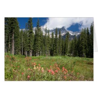 Banff florece Canadá Felicitaciones
