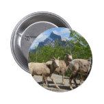 Banff Pin