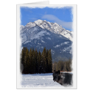 Banff Wolf in Winter with Mt Cascade Card