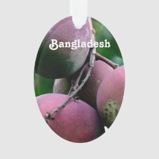 Bangladesh Mango Tree