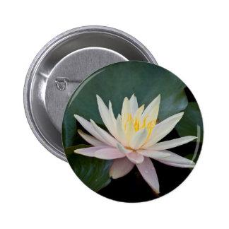 Bangladesh Water Lily Pinback Buttons