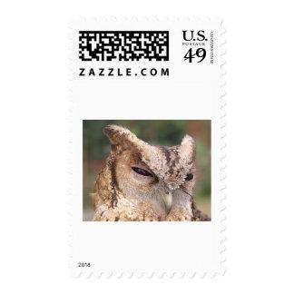 bangladeshi stamp