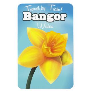 Bangor, Wales vintage Daffodil travel poster Magnet