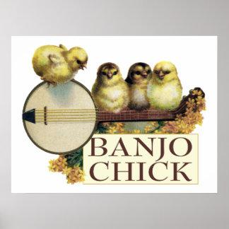 Banjo Chick Poster