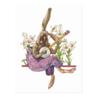 Banjo Playing Bunny Postcard