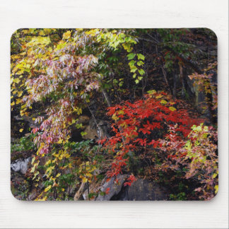 Bank of a Mountain Mouse Pad