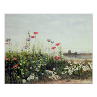 Bank of Summer Flowers Poster