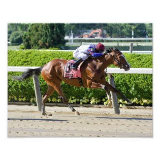 Bank Sting Winning the Critical Stakes Photo Print