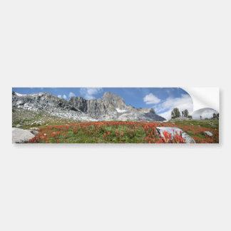 Banner Peak Wildflowers - Ansel Adams Wilderness Bumper Sticker