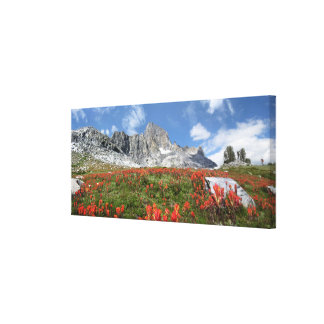 Banner Peak Wildflowers - Ansel Adams Wilderness Canvas Print