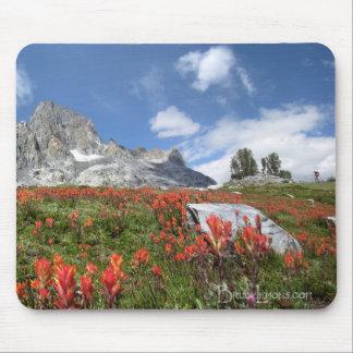 Banner Peak Wildflowers - Ansel Adams Wilderness Mouse Pad