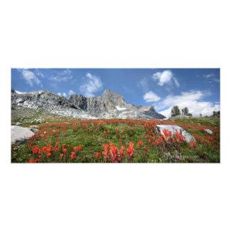 Banner Peak Wildflowers - Ansel Adams Wilderness Photo Print
