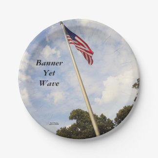 BANNER YET WAVE AMERICAN FLAG PAPER PLATE