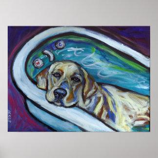 Baño amarillo de Labrador Poster
