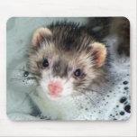 baño de burbujas del hurón alfombrilla de raton