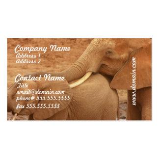 Baño de tarjetas de visita del elefante del bebé