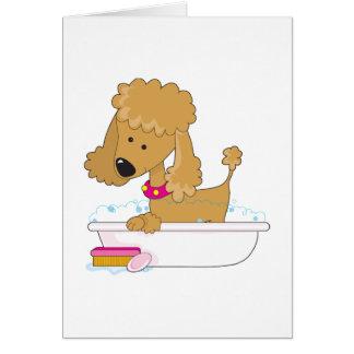 Baño del caniche tarjeton