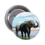 Baño del elefante pins