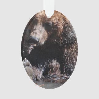 Baño del oso