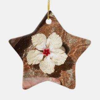 Baño del pie del Fijian Adorno De Cerámica En Forma De Estrella